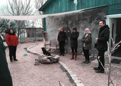 Hundetrainer Ausbildung Stuttgart